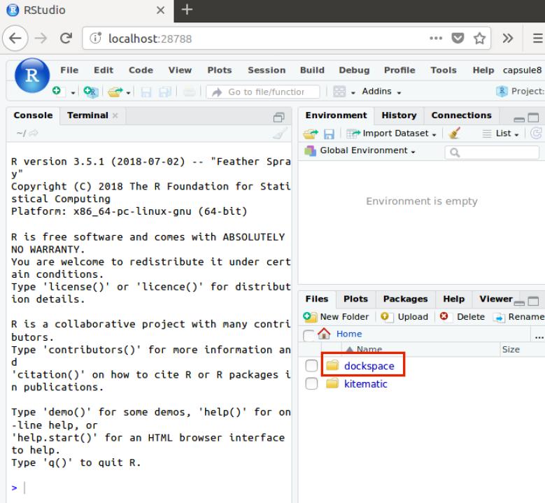 RStudio in Docker – now share your R code effortlessly! | R